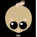 Kangarooratbody.png