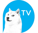 DogeTV (company)