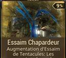 Essaim Chapardeur