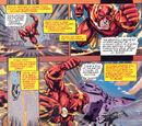 Matthew Schroeder/Flash: Explaining the Infinite Mass Punch