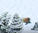 Implementation of Arctic Future Part 4