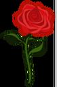 Signo de Rosa.png