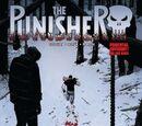 Punisher Vol 11 10
