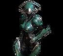 Mirage-Skin: Graxx