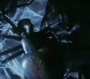 Giant Spider (Meet the Feebles)