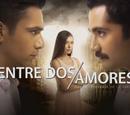 Entre dos amores (serie turca)