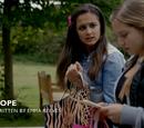 Hope (episode)