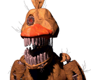 Torture Chica