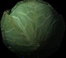 Їжа (Skyrim)