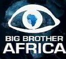 Big Brother Africa 6 (David34)