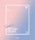 SEVENTEEN Official Colors.png