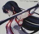 Akame ga KILL! Memorial Fanbook