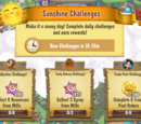 Sunshine Challenges