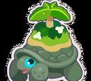 Tortoise Oasis
