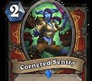 Cornered Sentry