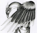 Stymphalian Bird Physiology