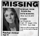 Echoh98/What do you think happened to Rachel Amber?