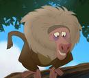 Старший бабуин