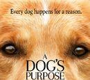 Dog's Purpose, A (2017)