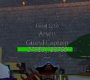 Arsen, Guard Captain