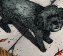 Zeke (Dog) (Earth-616)