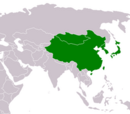 Viajando Para a Ásia