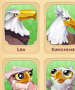 Bald Eagle Page.png
