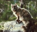 Toppycat/Robinclan (Toppycat// Old Coding