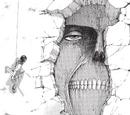 Colossus Titans
