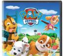 Pups Make a Splash (DVD)