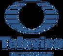 Televisa Networks
