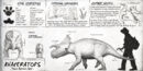 Avaceratops Dossier The Isle.jpg