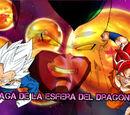 Saga de la Esfera del Dragón
