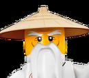 Sensei Wu