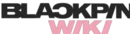 Blinks Wiki wordmark.png
