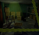 Storage Room/Gallery