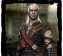 The Witcher FAQ