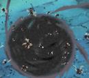 Technique du Mur d'Insectes