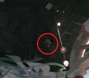RLMM: Disneyland: The Hanging Kid
