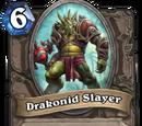 Drakonid Slayer