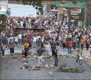 2012 Metsarbarros unrest