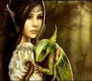 Draconic Elves
