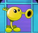 Trumpet Pea
