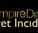 Vampire Diaries: Secret Incidents