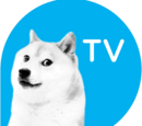 DogeTV (channel)