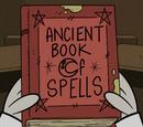 Ancient Book of Spells