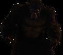 Gorila Grodd (CW)