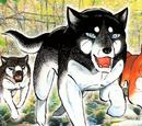 Kisaragi's Sons