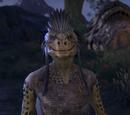 ESO Morrowind: Personen