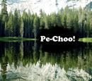 Pe-Choo!